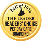 Best of 2016 Boarding