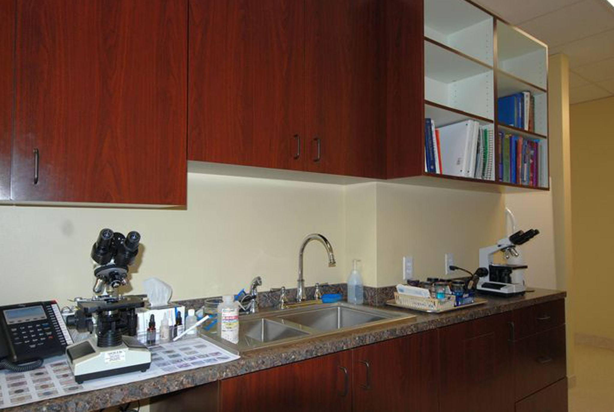 Microscope and Parasite Identification - Houston, TX - Oak Forest Veterinary Hospital
